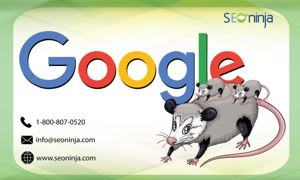 google-possum-update-seo-ninja